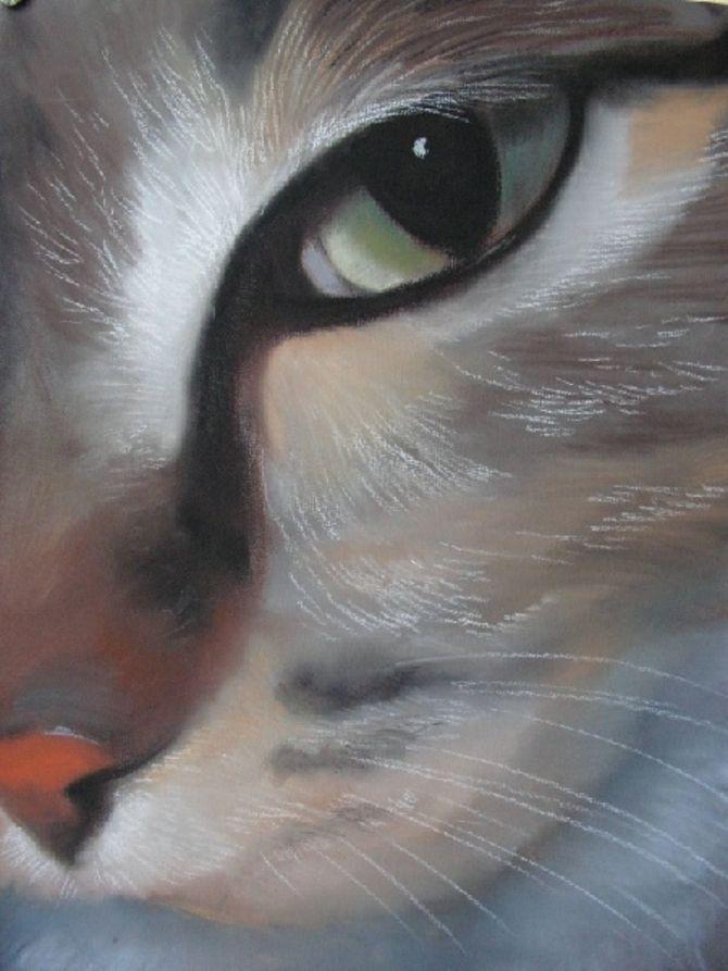 Рисунки пастелью