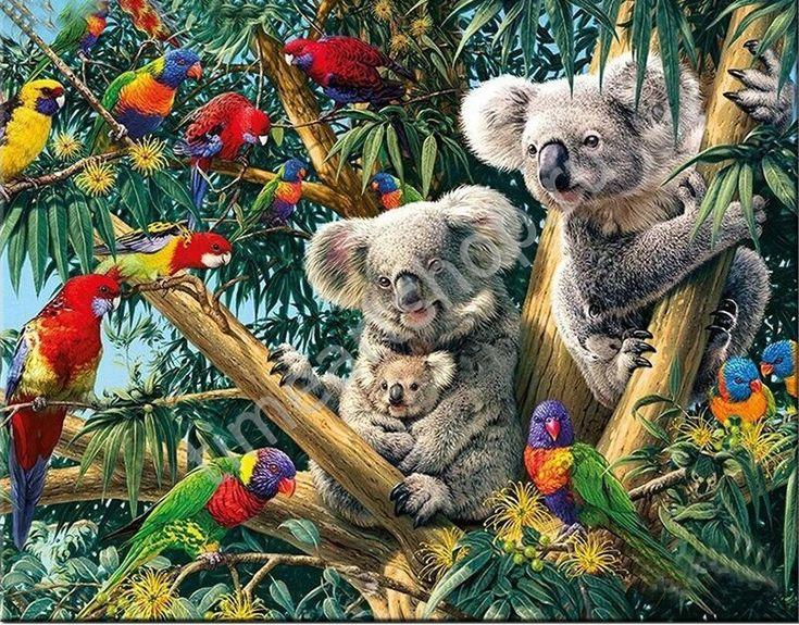 Коалы в тропиках, картина раскраска по номерам. размер 40 ...