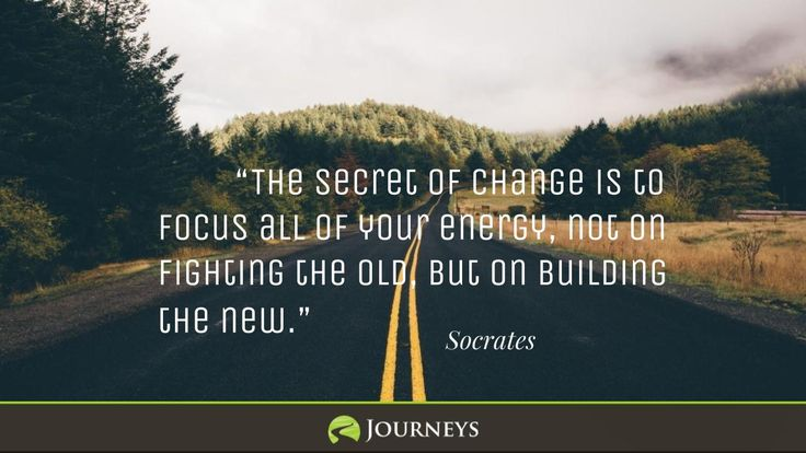 1000 Cruise Quotes On Pinterest: 1000+ Socrates Quotes On Pinterest