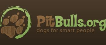 My LOVE of pit bulls and DISGUST of people's ignorance about them.
