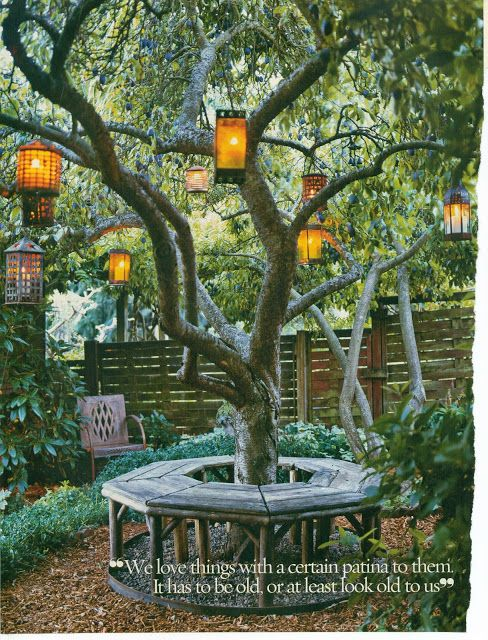 Lanterns for the backyard tree