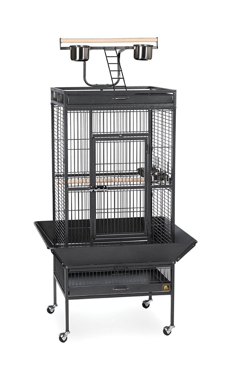 Prevue Hendryx 3152BLK Pet Products Wrought Iron Select Bird Cage Black