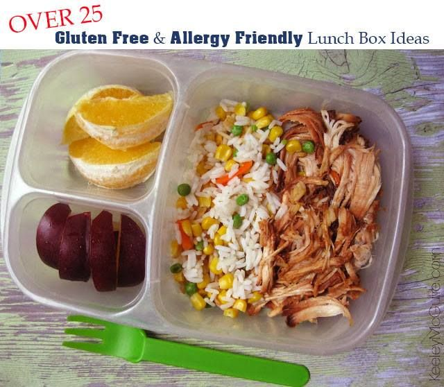 Lunch Made Easy Over 25 Gluten Free Allergy Friendly Lunch Box