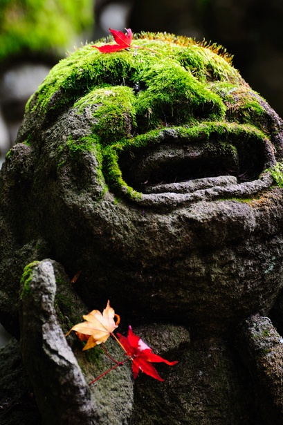 Moss covered Buddha statue in Otagi, Kyoto, Japan: photo by nikorjiji #japan