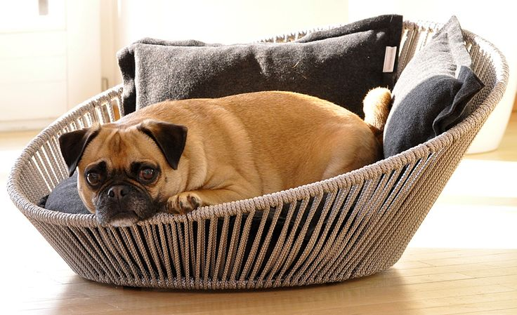 Design-Orientated And Durable Pet Furnitures From Pet Interiors