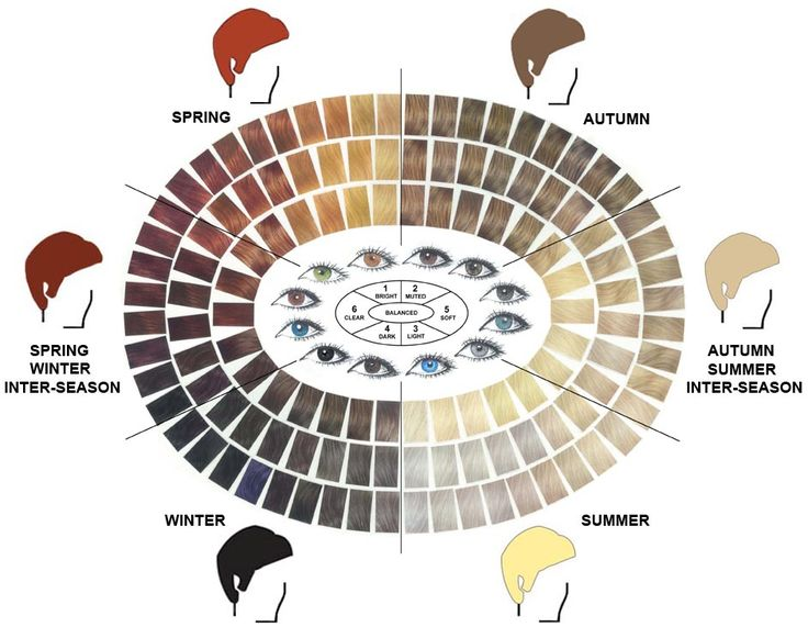 17 Best images about Color Analysis General on Pinterest