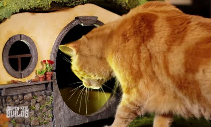 lord-of-the-rings-cat-liter-box-sauron-scrathing-post-superfan-builds-16