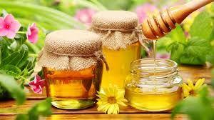 obat herbal agar cepat hamil alami