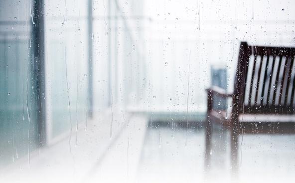 어느 비 오는 날, 아침