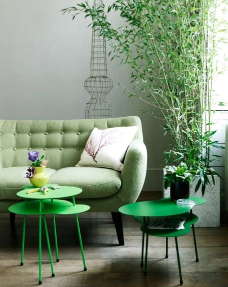 Green - mint green couch and plant