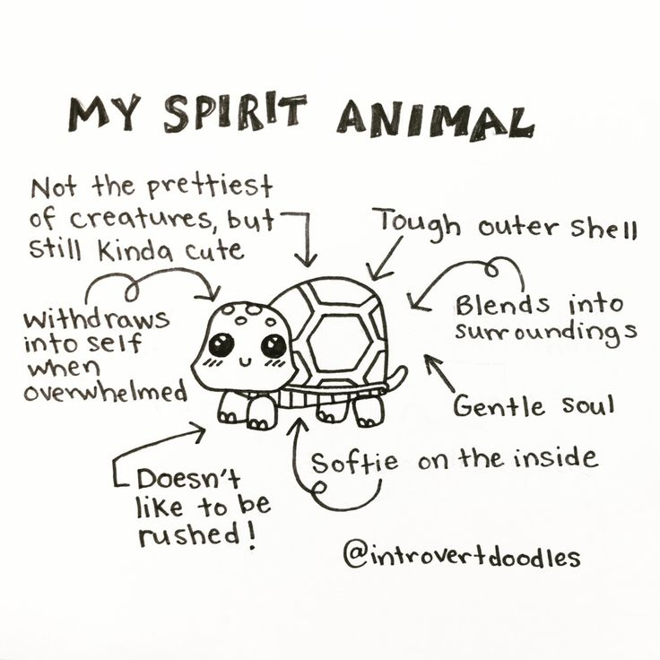 Ha ha thought I was more butterfly than tortoise but I am embracing my inner self!!