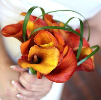 Small orange calla lilies bouquet. bridesmaids.
