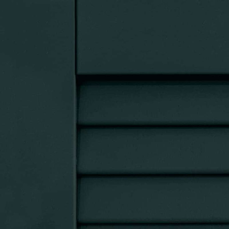Benjamin Moore Black Forest Green Dark Shutters Painted