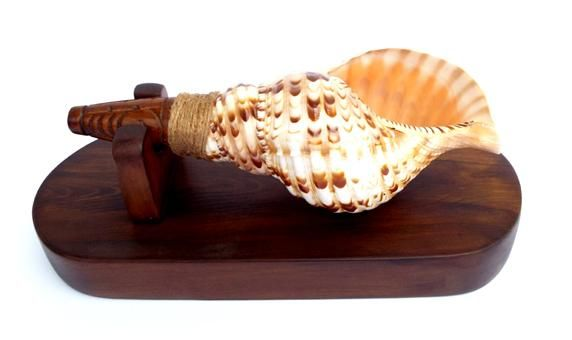 Maori+Putatara+Conch+Shell+Trumpet  http://www.shopenzed.com/maori-putatara-conch-shell-trumpet-xidp521190.html