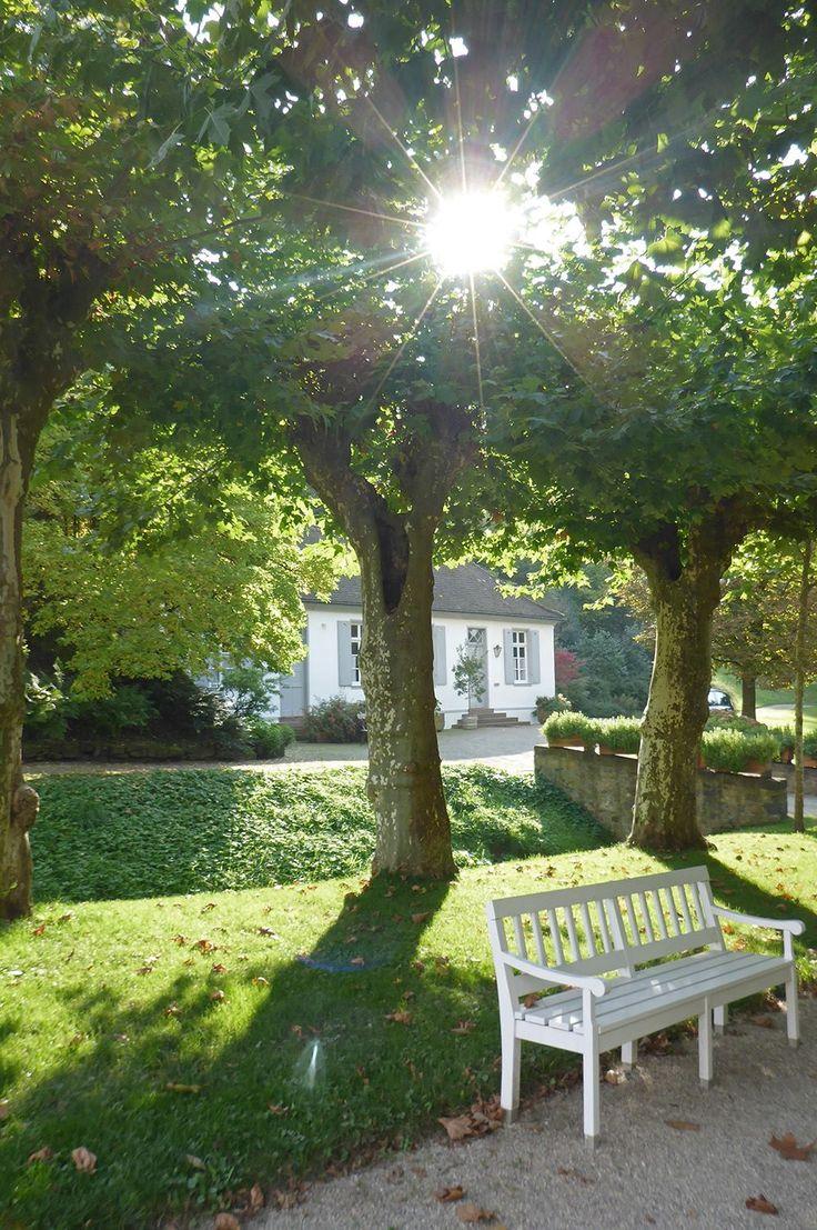 #Staatspark #Fürstenlager #Konditorei #Konditoreibau #Gartenbank #Platanenallee #Allee #Gartendenkmalpflege #Bensheim #HessischeWeinstraße #b_lau