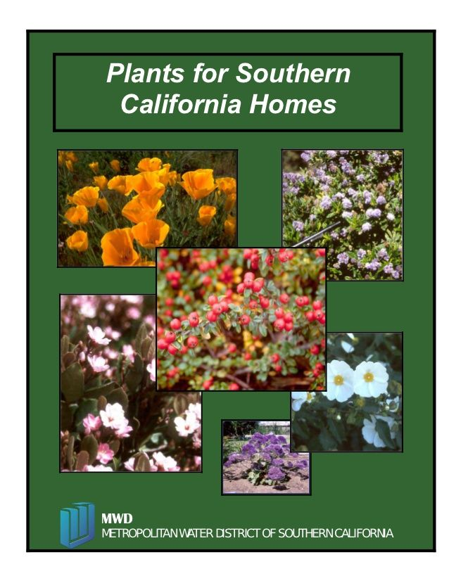 Xeriscape Plants for Southern California Homes by Simm846q via slideshare