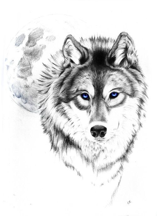 wolf tattoo | Tumblr love this wolf and moon. The eyes though !!! I want it but I want my kids names incorporated!!!