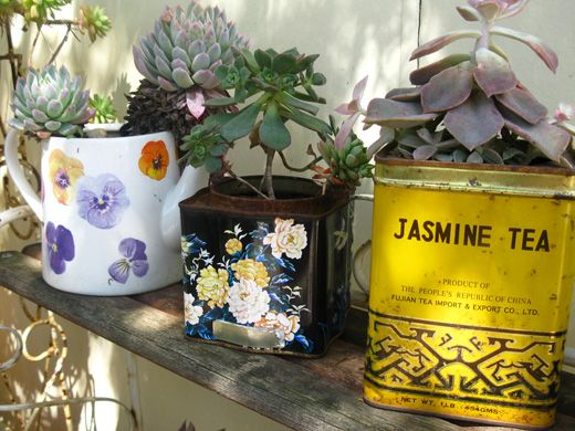 36 best images about kitchen windowsill dispalys on for Recycled flower pots