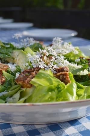Salad with toasted ryebread - Æblegaarden B&B, Langeland, Denmark, www.aeblegaarden.dk Photo by Sannie Terese Burén