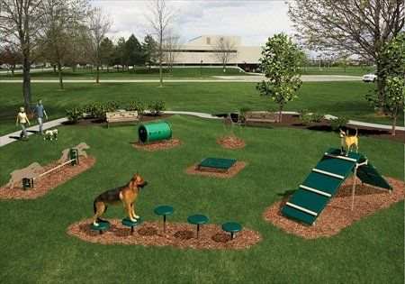 Backyard Dog Playground - Jack and Lewis need something like this in their new fenced in back yard! Description from pinterest.com. I searched for this on bing.com/images