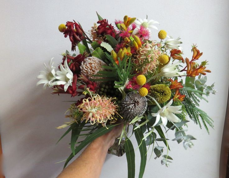 Australian native flowers, wedding bouquet, hand tied, brights, colourful, flannel flowers, kangaroo paw, grevillea, banksia, wattle foliage, billy buttons, blue gum. Rustic, country, bespoke.