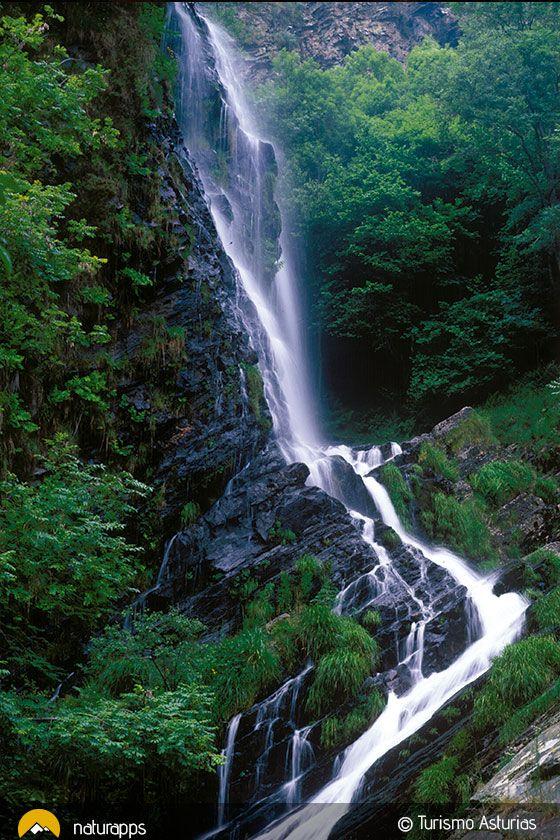 a Reserva de la Biosfera del río Eo, Oscos y Terras de Burón, en el occidente de Asturias