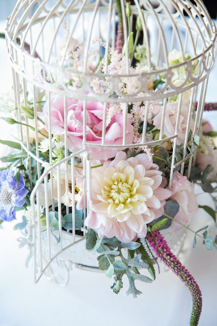 23 Best Louise Images On Pinterest Wedding Bouquets Rose Bush And