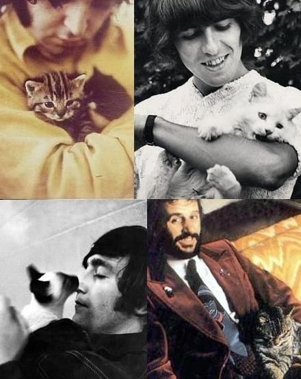 Beatles and their cats. Paul McCartney, George Harrison (RIP), John Lennon (RIP), & Ringo Starr