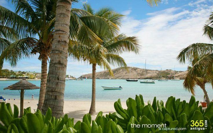 365antigua.com - what 2 know, where 2 go in Antigua