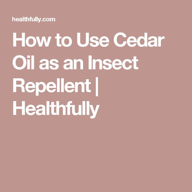 How to Use Cedar Oil as an Insect Repellent   Healthfully