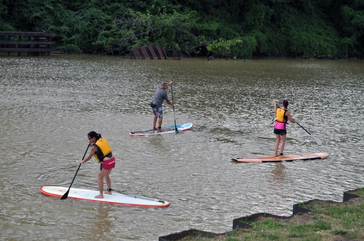 Stand up paddleboarders at Feast to the Beat