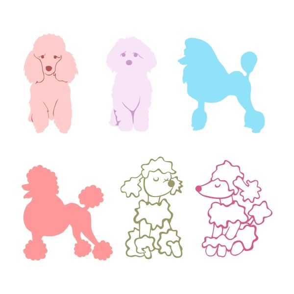 Poodle Cuttable Design Cut File. Vector, Clipart, Digital Scrapbooking Download, Available in JPEG, PDF, EPS, DXF and SVG. Works with Cricut, Design Space, Cuts A Lot, Make the Cut!, Inkscape, CorelDraw, Adobe Illustrator, Silhouette Cameo, Brother ScanNCut and other software.