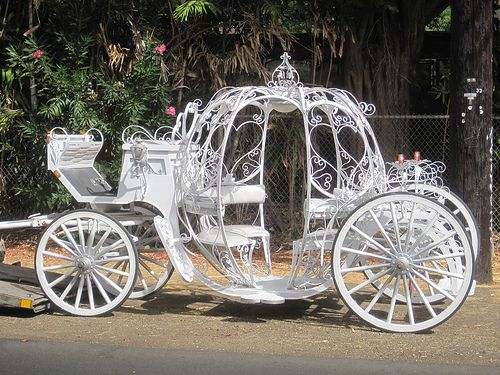 White horse carriage for wedding & park rides,