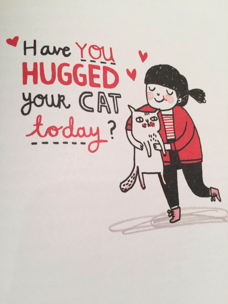 Have you hugged your cat today? // Inside // Here Kitty Kitty // Mallory Mcinnis