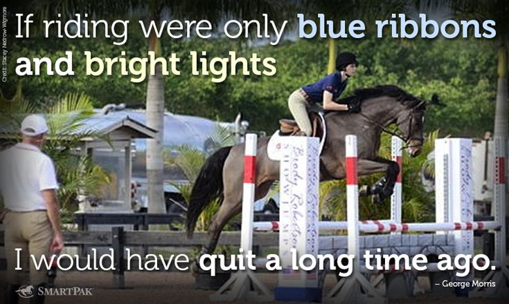 So true. It's the bond between horse and human that counts