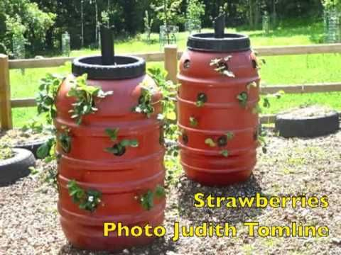 ▶ How To Set Up vertical Garden Tower part 1 . Grow your own vegetables Hypnotica - YouTube