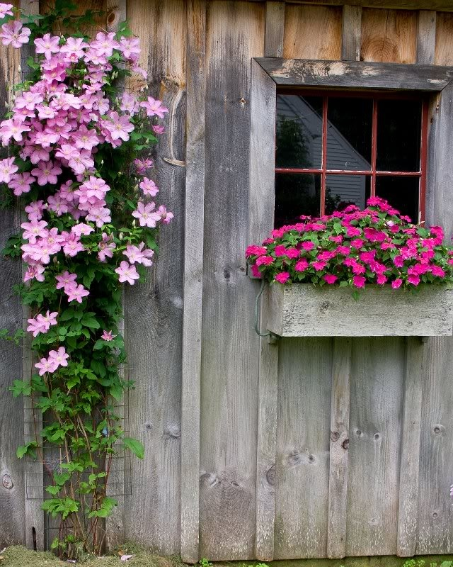 Garden Sheds New Hampshire 230 best new hampshire images on pinterest | new hampshire
