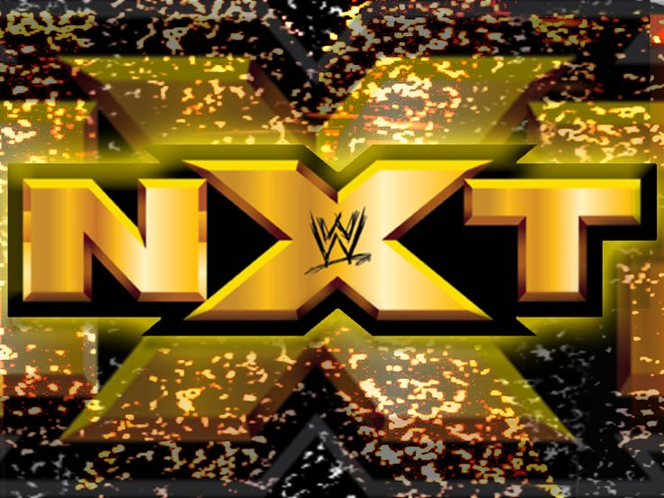 Matt Hardy and Reby Sky Reveal Baby Gender, Match Announced for Next Week's WWE NXT - http://www.wrestlesite.com/wwe/matt-hardy-reby-sky-reveal-baby-gender-match-announced-next-weeks-wwe-nxt/