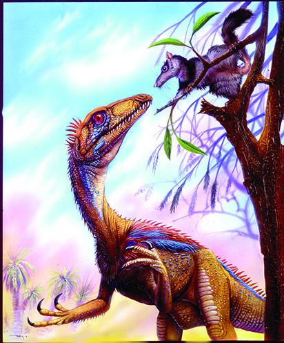 eoraptor dinosaur king - photo #33