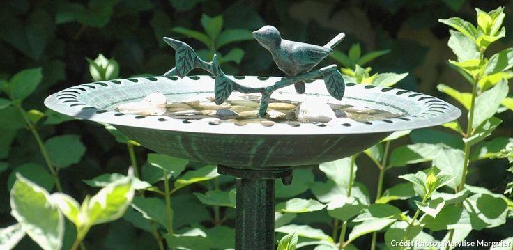Déco jardin : un abreuvoir pour les oiseaux en été. #baindoiseau #été #abreuvoir #oiseaux #jardin #detentejardin