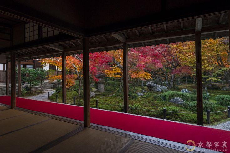 紅葉が美しいというだけでは、、、 【圓光寺】
