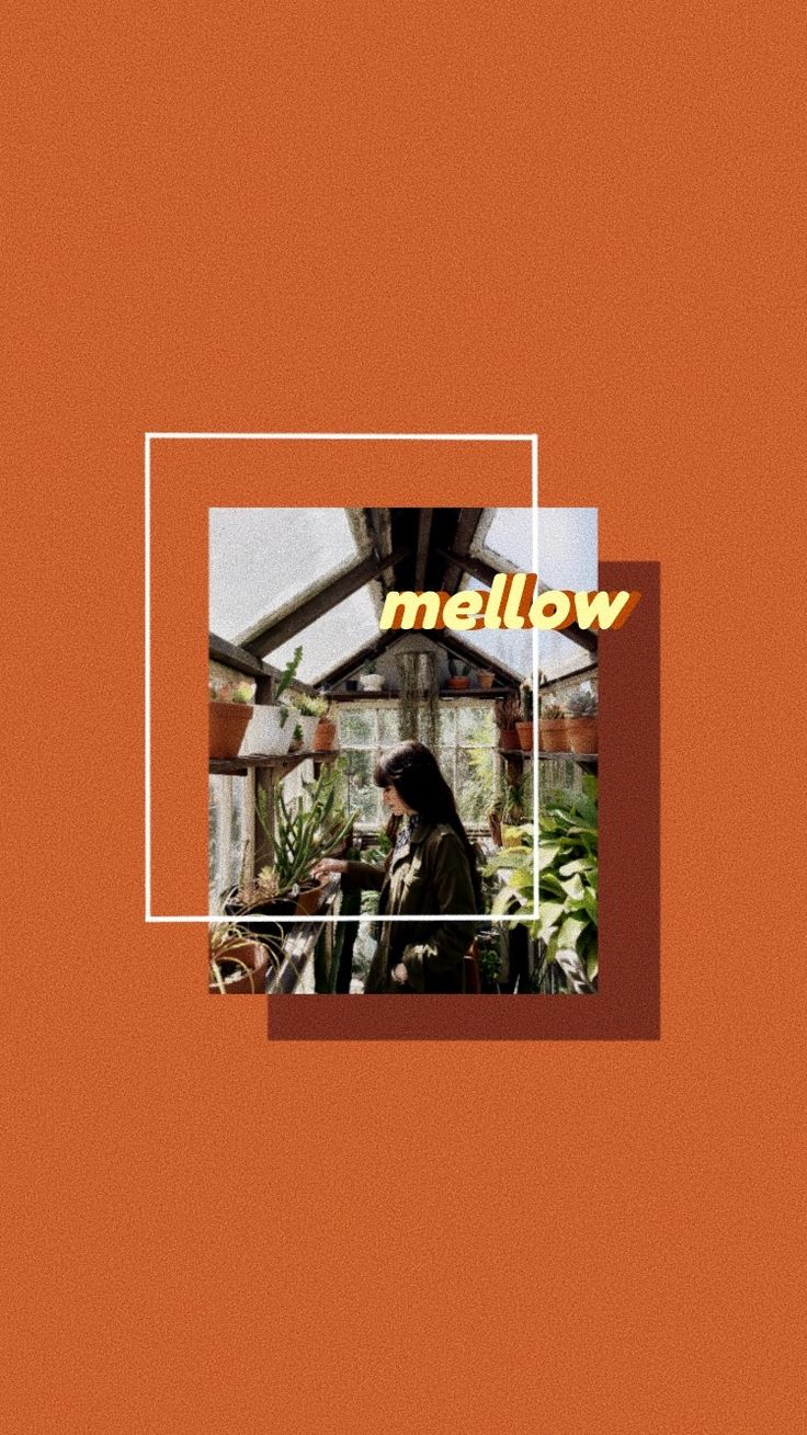 "Orange aesthetic wallpaper- ""Mellow"" Orange aesthetic wallpaper- ""Mellow"""