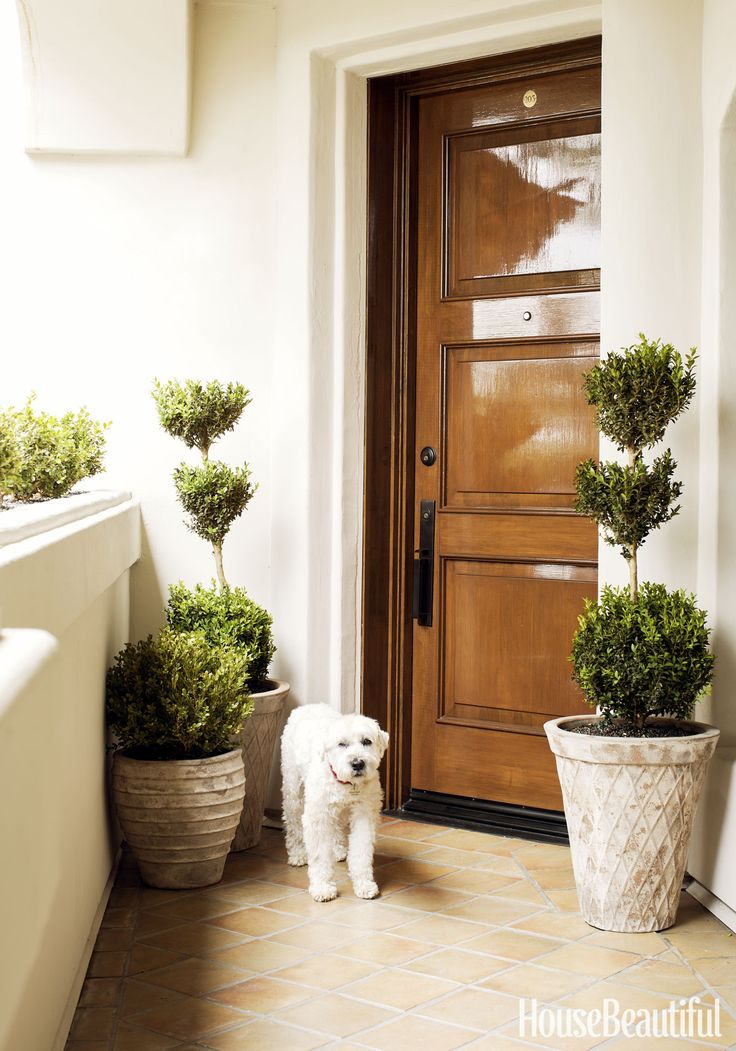 choose a classic wooden front door for a home decorated with neutral colors