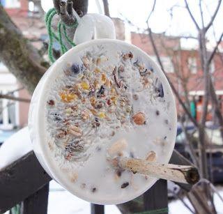 Huis lief huis: Vogel-voer-kopje.