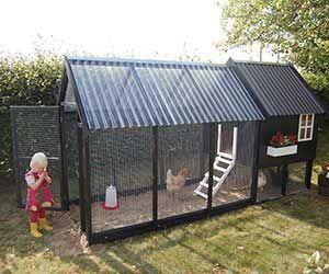 Hønsehus model Deluxe