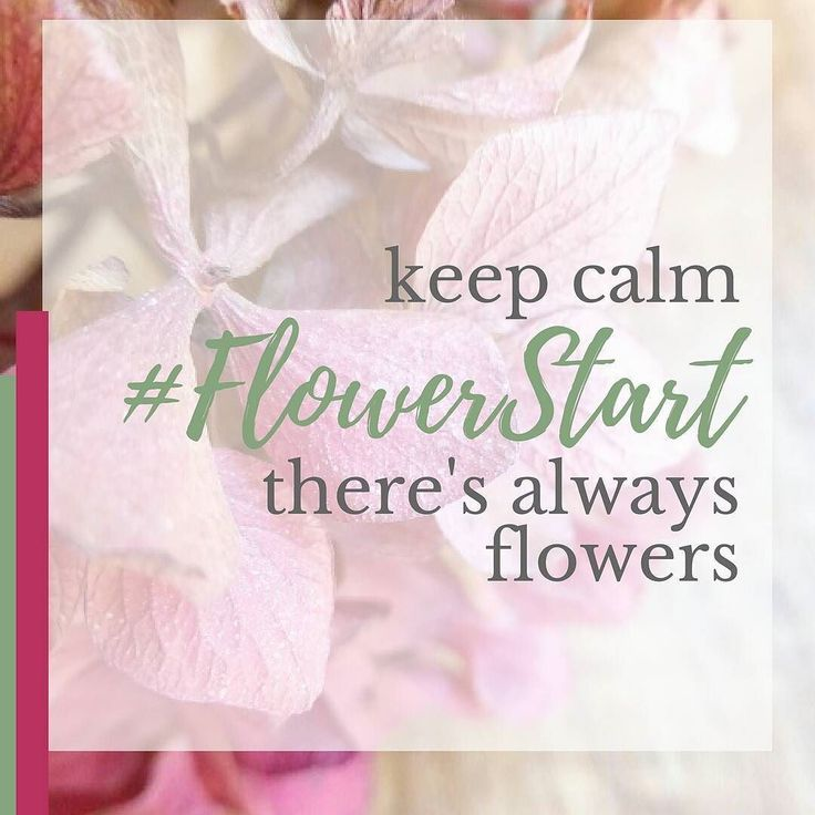 Have you heard about FlowerStart my 4-week online flower arranging class?  Not sure whether it's for you? Please ask me a question ... . . . . .  #MoveonMum #MoveonMums #nobabysitterequired #fromzerotoflowerhero #Flowerstart #flowerarranging #loveflowers #lovegardening #thefloristthatteaches