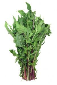 Jugo de desintoxicación del hígado Los alimentos calientes y Limpieza - diente de león verdes Ingredientes: 1 manojo de col rizada 3 hojas de diente de león 1 1 pepino pequeño fragmento de la cúrcuma fresca (o 1/4 de cucharadita de seca) 1 limón, jugo de 2 dientes de ajo 2 cebollas verdes (cebollinos) 1 puñado brotes de brócoli 1 pizca de cayena pieza de 3 pulgadas de la raíz de bardana