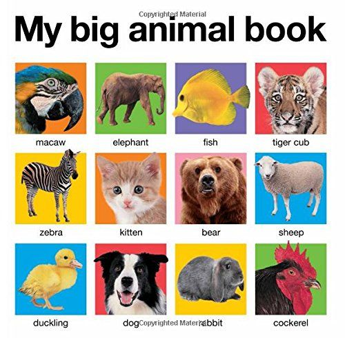 My Big Animal Book (My Big Board Books) Priddy Books