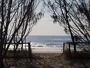 Currumbin Beach, Gold Coast Queensland...we call it home. #swell2012  www.swellsculpture.com.au
