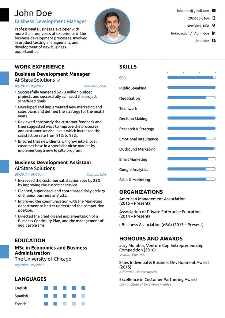 Professional Resume Template Resume format examples